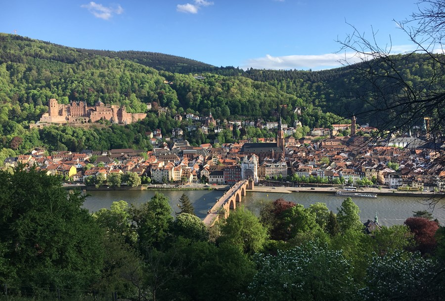 View of Heidelberg from the Philosophers' Walk